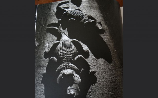 Krokodillen van Paladino's I Dormienti