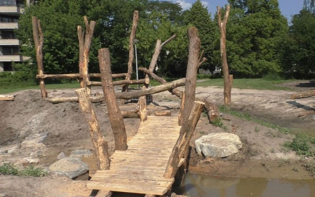Het bruggetje naar het speeleiland van Robinia hardhout, een inheemse soort