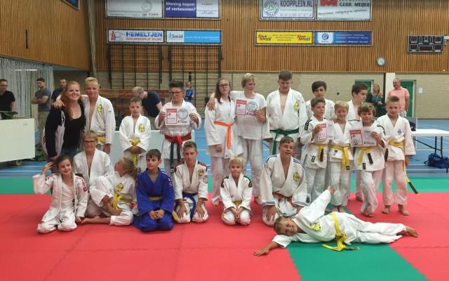 judo almelo