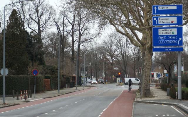 Vriezenveenseweg wil groenste straat van Overijssel wordenl