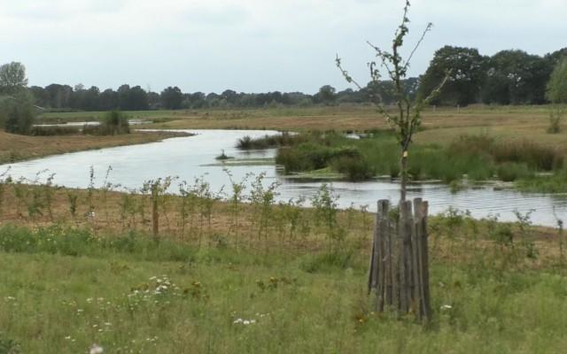 Doorbraak en Groene Delta