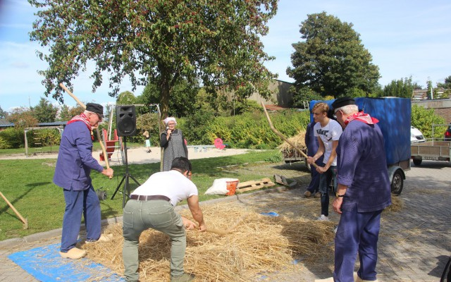 Ook  buurtbewoners hielpen mee om het graan te dorsen